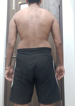 The Four Body Types, Body Type Quiz (Male/Man/Men) Results 915 - Body Type Two (BT2), Fellow One Research Participant Test